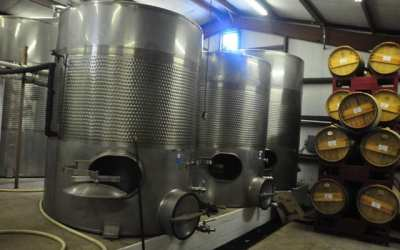 Starting Work at the Winery