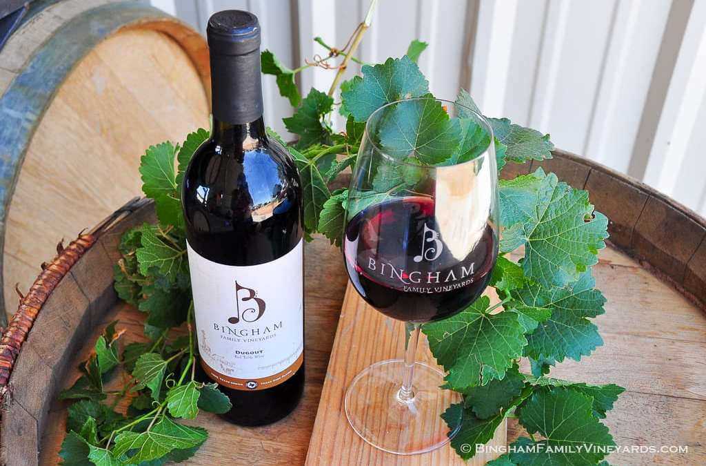 Wine of the Week – Dugout