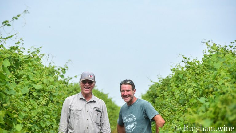 Dave Reilly and Cliff Bingham standing in Bingham Family Vineyards.