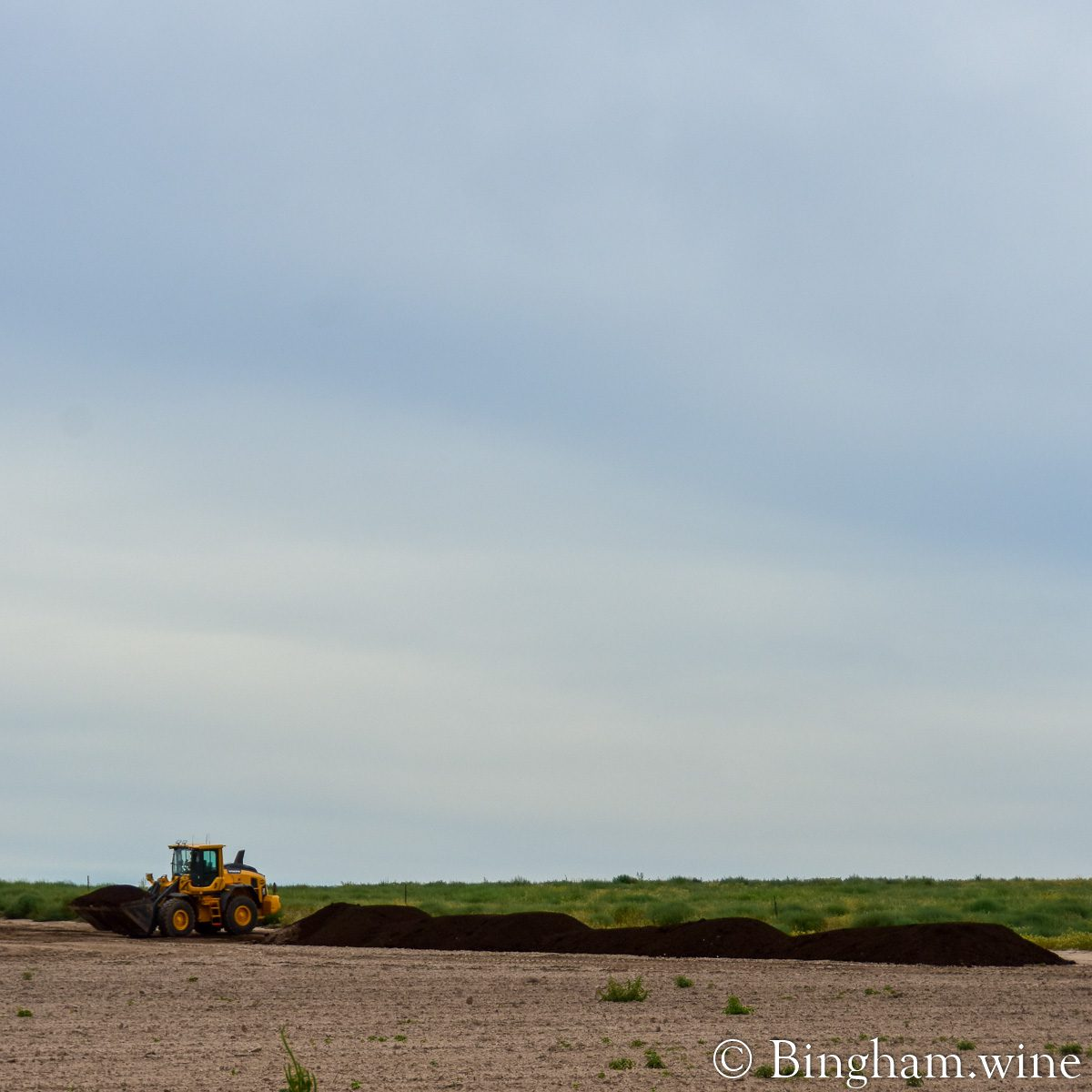 Front loader with piles of compost along the crop rows at Bingham Organic Farms.
