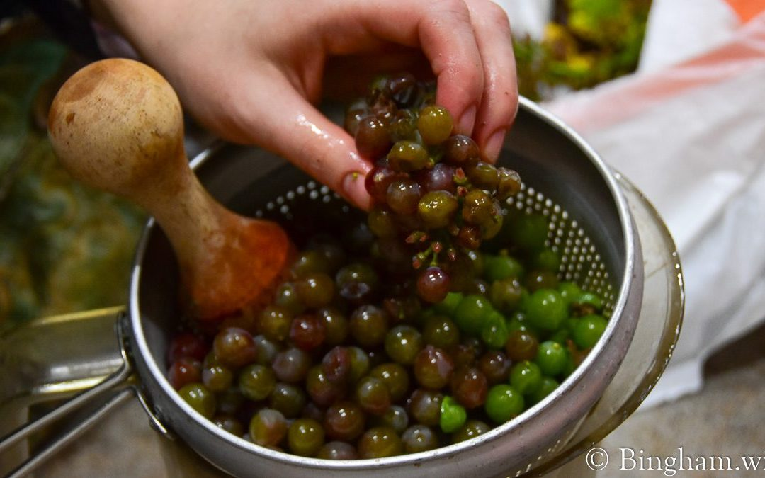 Testing Grapes and Winery Update at Bingham Family Vineyards