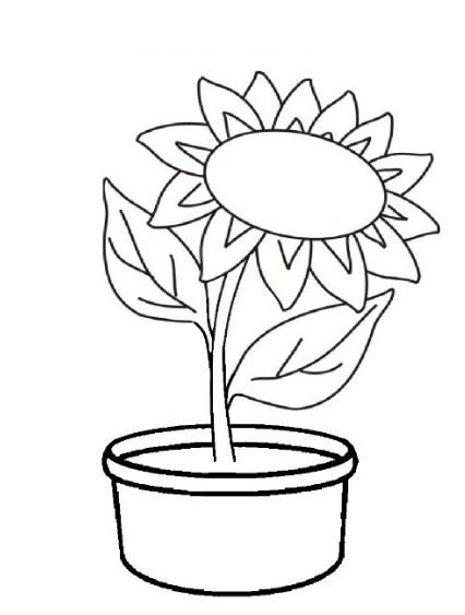 Gambar Bunga Raflesia Republika Rss Classy World