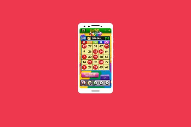 Confira o jogo de bingo entenda tudo sobre bingo!