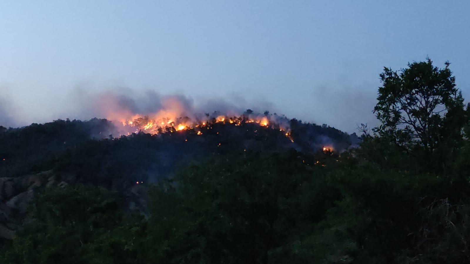 Bingöl'de orman yangını 2 günde kontrol altına alınabildi