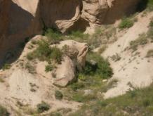Fels in der Form eines Bärenkopfes
