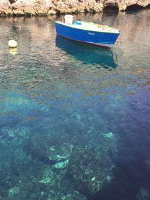 Etwas abseits bei der Blauen Grotte -Malta