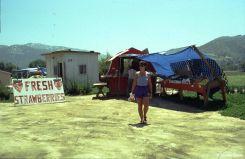 1995_Californien_28