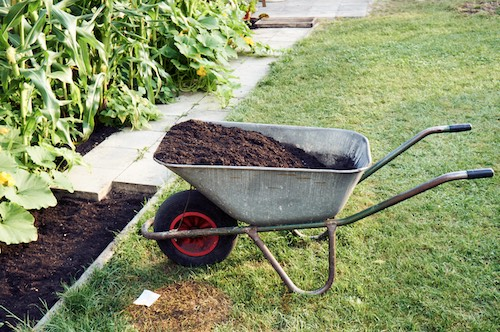 Alles über die Gartenpflege
