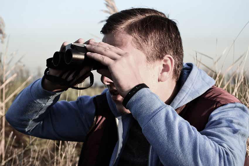 Best Binoculars for Elk