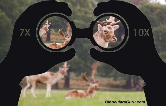 Understanding Binoculars Magnification