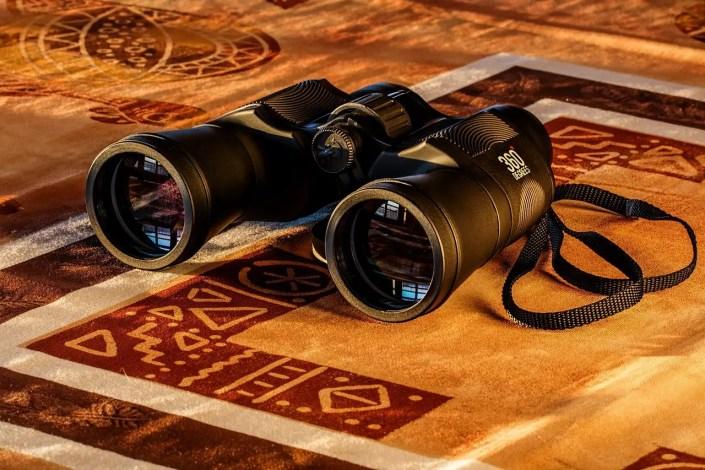 best binoculars under 100