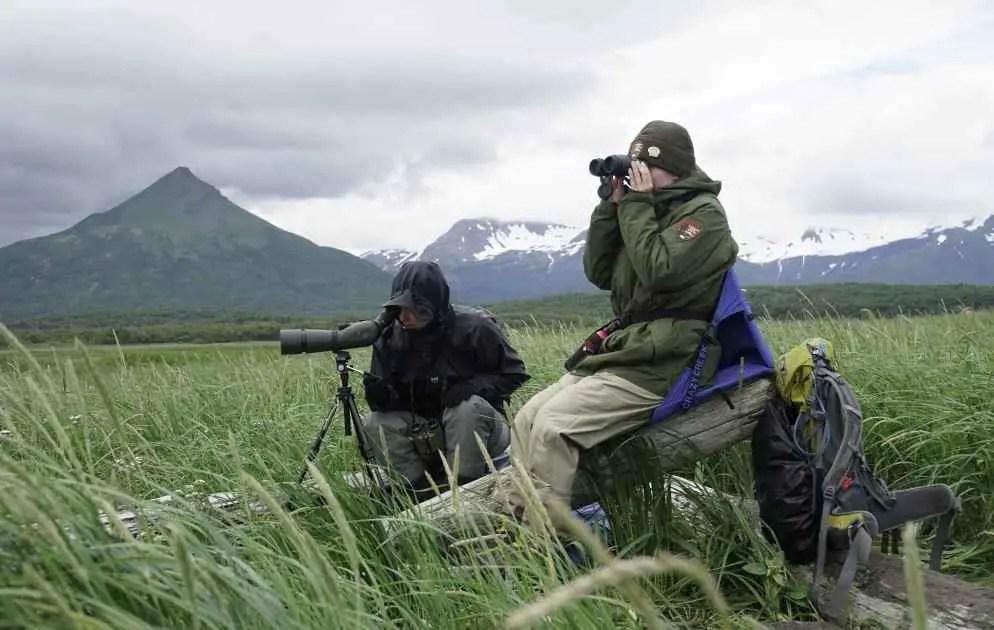 tips on choosing wildlife binoculars