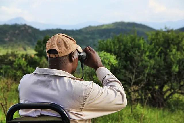 tips-on-choosing-wildlife-binoculars