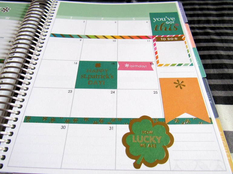 IMG 0463 - Binx Thinx About: The Erin Condren Life Planner