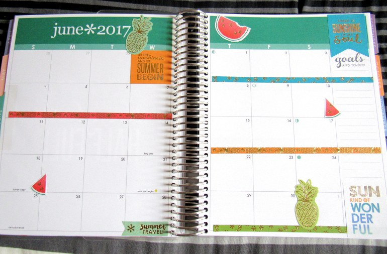 IMG 0470 - Binx Thinx About: The Erin Condren Life Planner
