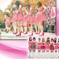 CherryBelle Nonton SNSD di SMTOWN Tour lll jakarta ?