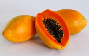Bioalgarrobo papaya ecológica