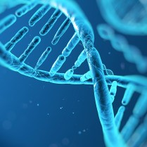 La comunicación, en el ADN