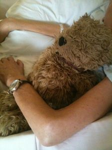 Picture of Donna & Ruggles in hospice