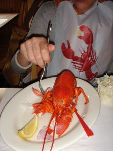 When in Maine Eat Lobsters