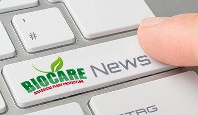 Tastatur mit beschrifteter Taste - News