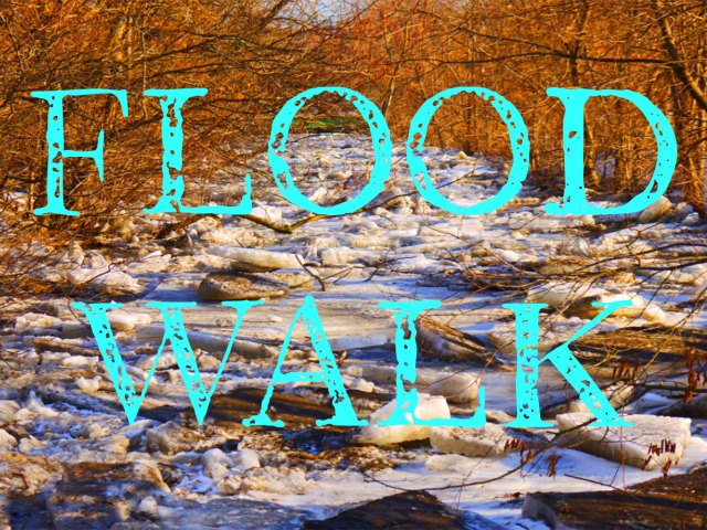 flood-walk-pic