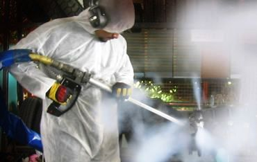 Mold Removal St louis