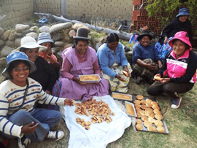 Promoviendo Acciones De Adaptación Al Cambio Climatico Y Fortaleciendo La Seguridad Alimentaria Del Sistema De Vida De Huatajata