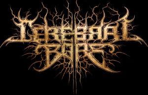 Cerebral Bore Logo Image