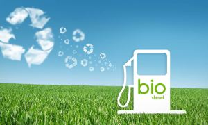 biodiesel bioetanol argentina biocombustibles