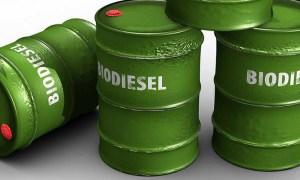 biocombustibles argentina