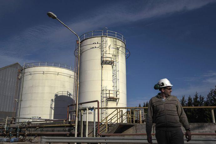 industria-biodiesel-ley