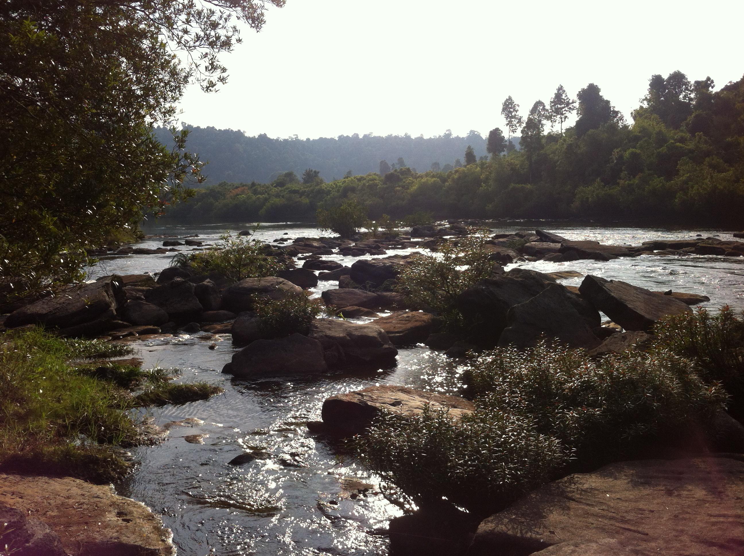 Community Based Ecotourism Is Biodiversity Benefitting