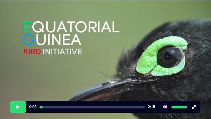 Kickstarter video by Mo Twine