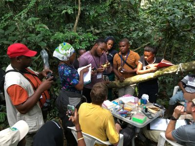 A group of researchers with INDEFOR-AP gather in the rainforest as a captured bird is assessed.