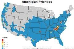 amphibians_usa_priorities_thumb