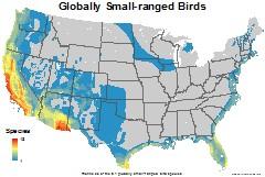 birds_usa_globally_small_thumb