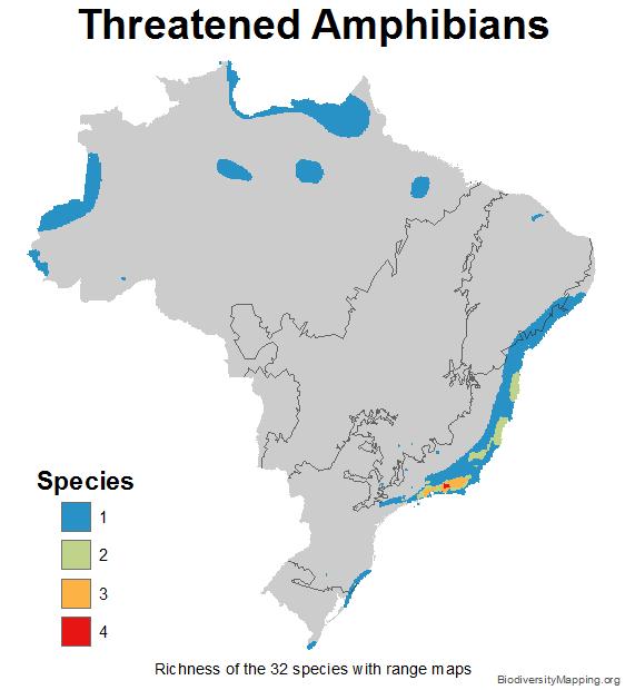 brazil_amphibians_threatened_small