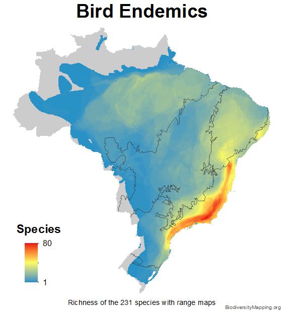 brazil_birds_endemics_small