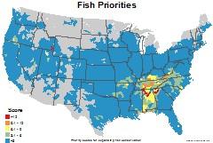fish_usa_priorities_thumb