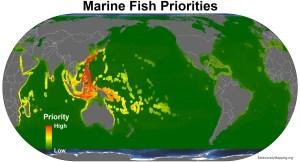 marine_fish_priorities