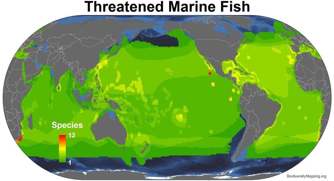 marine_fish_threatened