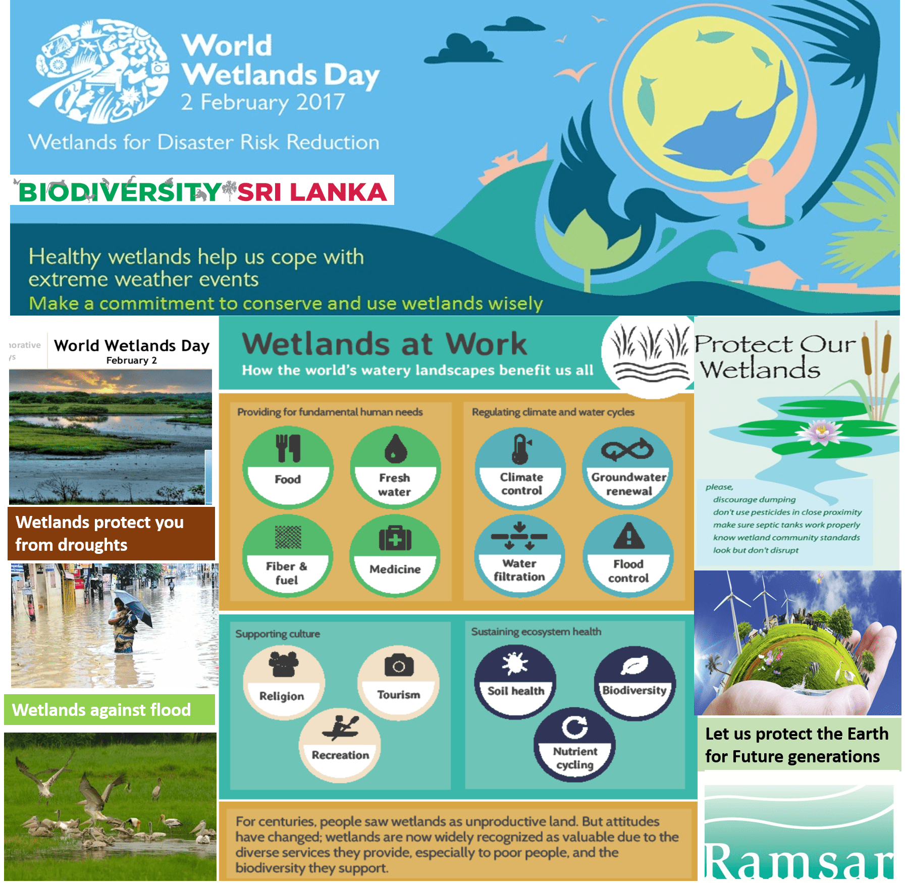 Today Is World Wetlands Day