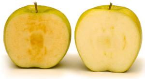 arctic apple vs regular crop