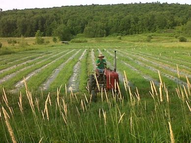 Rob in 2012 working on his farm. Image from the Songberry Farm Facebook page.