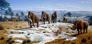 Woolly mammoths in Europe as they might have looked in life painting by Mauricio Antón and the 2008 Public Library of Science