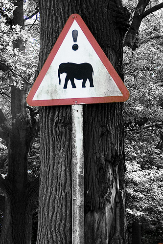danger sign with elephant on it