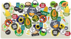 GMO Labels, by Slate staff
