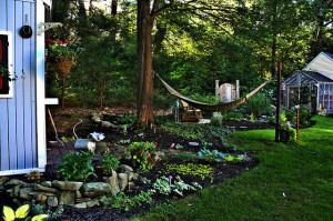 backyard lawn garden