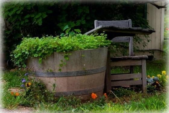 school desk garden